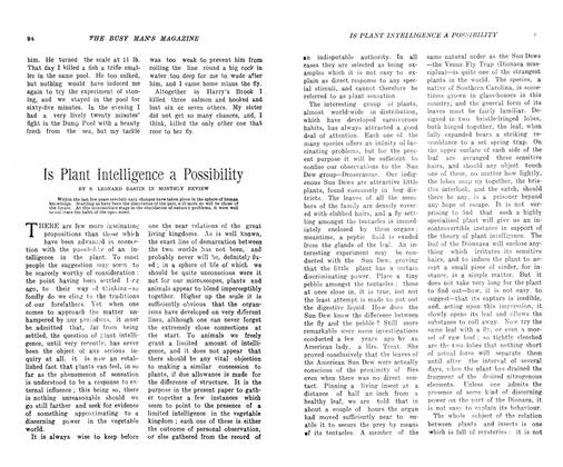 Article Preview: Is Plant Intelligence a Possibility, December 1906 | Maclean's
