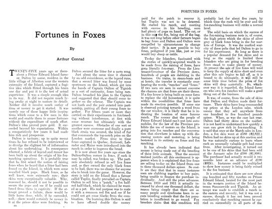 Article Preview: Fortunes in Foxes, December 1911   Maclean's