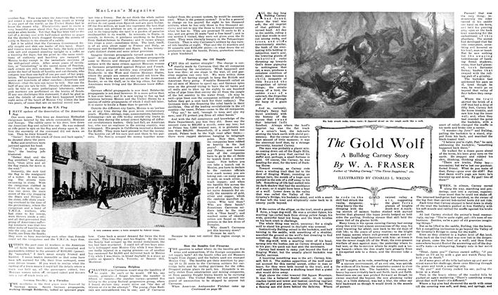 Article Preview: The Gold Wolf, June 1919 | Maclean's