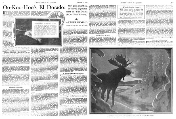 Article Preview: Oo-Koo-Hoo's El Dorado:, December 1920 | Maclean's