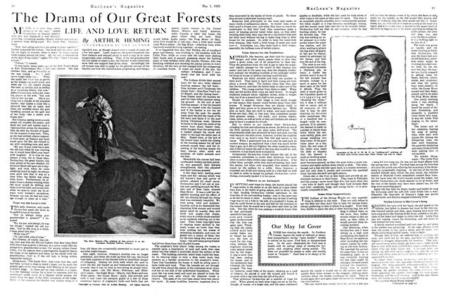 Article Preview: The Drama of Our Great Forests LIFE AND LOVE RETURN, MAY 1st, 1921 1921 | Maclean's