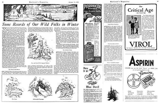 Article Preview: Some Records of Our Wild Folks in Winter, January 1923 | Maclean's