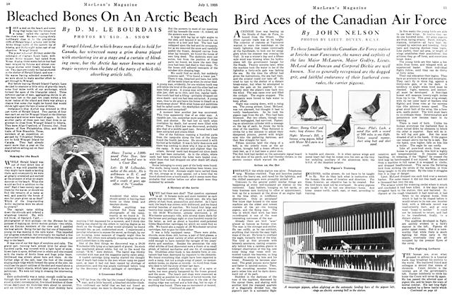Article Preview: Bleached Bones On An Arctic Beach, July 1925 | Maclean's