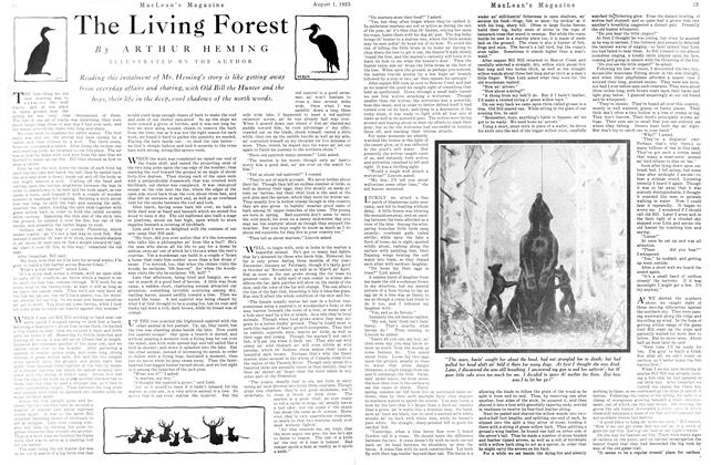 Article Preview: The Living Forest, August 1925   Maclean's