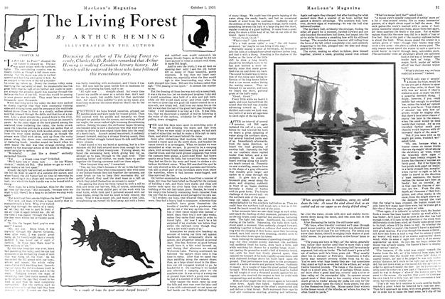 Article Preview: The Living Forest, October 1925 | Maclean's