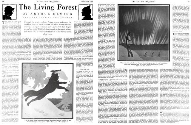 Article Preview: The Living Forest, October 15th 1925 1925 | Maclean's