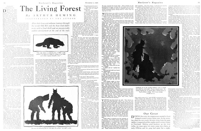 Article Preview: The Living Forest, November 1925 | Maclean's