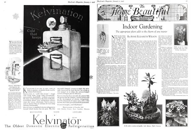 Article Preview: Indoor Gardening, January 1 ST 1927 1927 | Maclean's