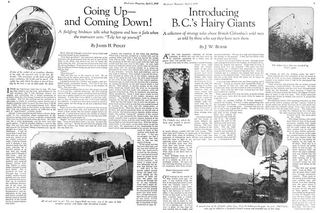 Article Preview: Going Up— and Coming Down!, April 1929 | Maclean's