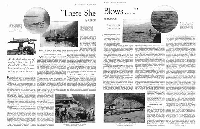 "Article Preview: ""There She Blows . . . !"", August 1930 