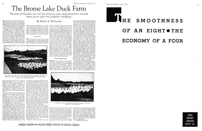 Article Preview: The Brome Lake Duck Farm, June 1931 | Maclean's