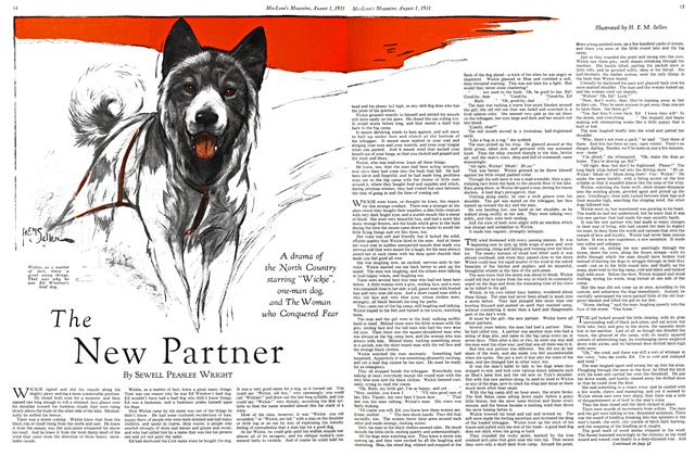 Article Preview: The New Partner, August 1931 | Maclean's