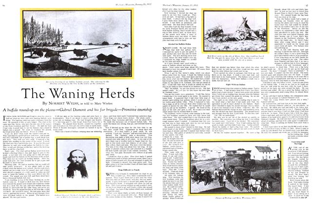 Article Preview: The Waning Herds, January 15TH 1933 1933 | Maclean's