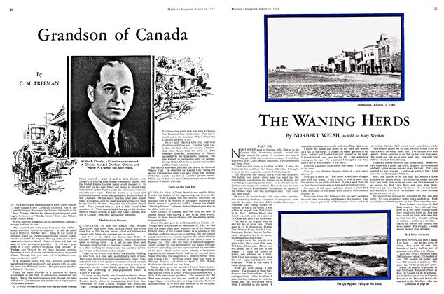 Article Preview: THE WANING HERDS, March 15th 1933 | Maclean's