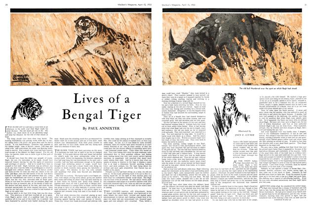 Article Preview: Lives of a Bengal Tiger, April 15th 1933 | Maclean's