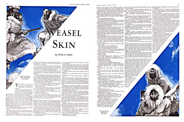 Article Preview: WEASEL SKIN, March 15th 1934 1934 | Maclean's