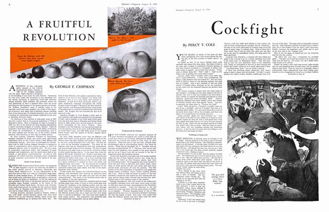 Article Preview: Cockfight, August 1934 | Maclean's