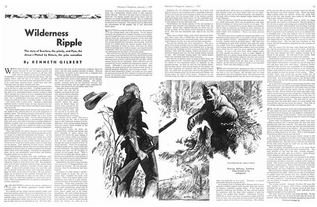 Article Preview: Wilderness Ripple, January 1937 | Maclean's