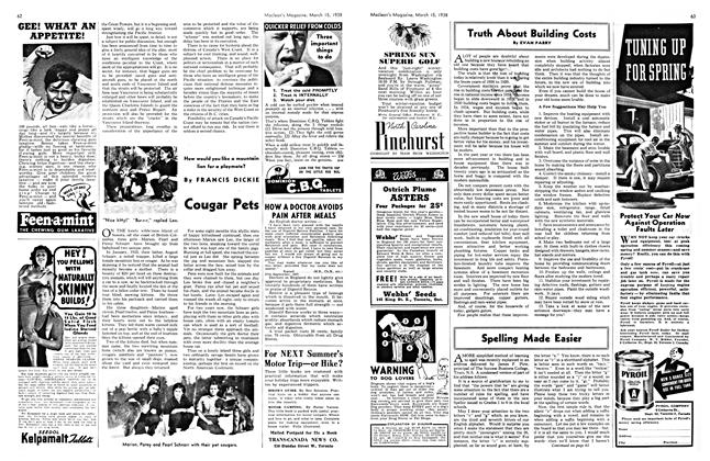 Article Preview: Cougar Pets, March 1938 | Maclean's