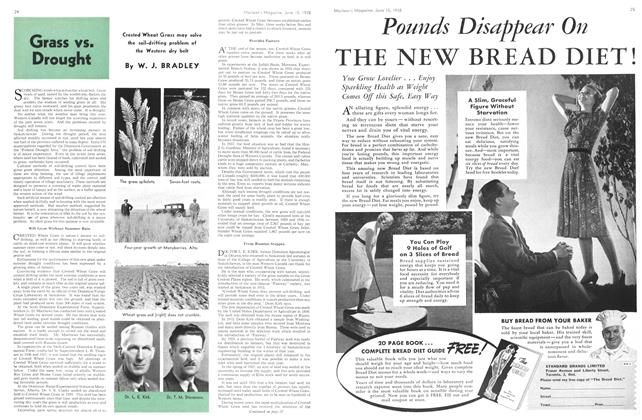 Article Preview: Grass vs. Drought, June 1938 | Maclean's