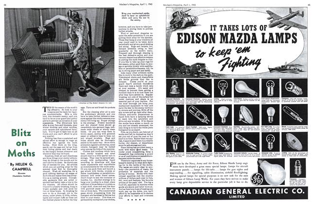 Article Preview: Blitz on Moths, April 1943 | Maclean's