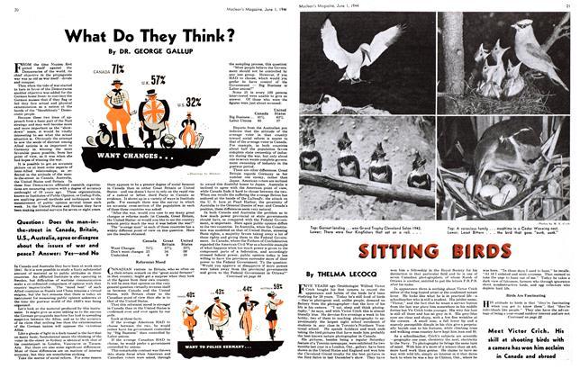 Article Preview: SITTING BIRDS, June 1944 | Maclean's