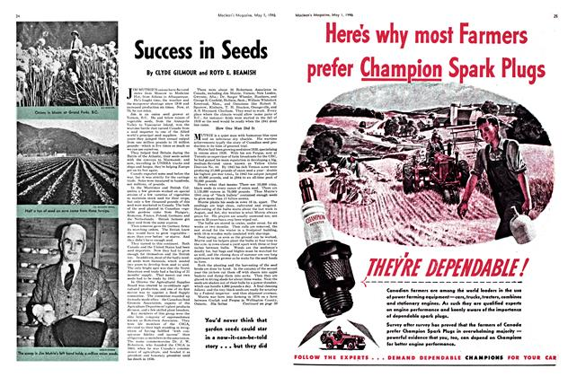 Article Preview: Success in Seeds, May 1946 | Maclean's