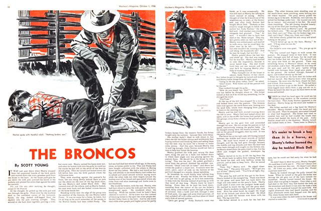 Article Preview: THE BRONCOS, October 1946 | Maclean's