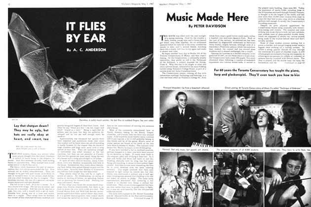 Article Preview: IT FLIES BY EAR, May 1947 | Maclean's