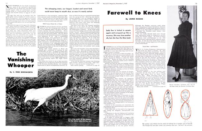 Article Preview: Farewell to Knees, November 1947 | Maclean's
