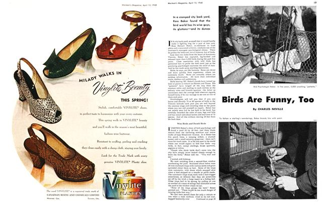 Article Preview: Birds Are Funny, Too, April 1948 | Maclean's