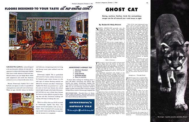 Article Preview: GHOST CAT, October 1948 | Maclean's