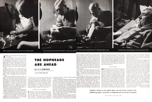 Article Preview: THE HOPHEADS ARE AHEAD, November 1948 | Maclean's