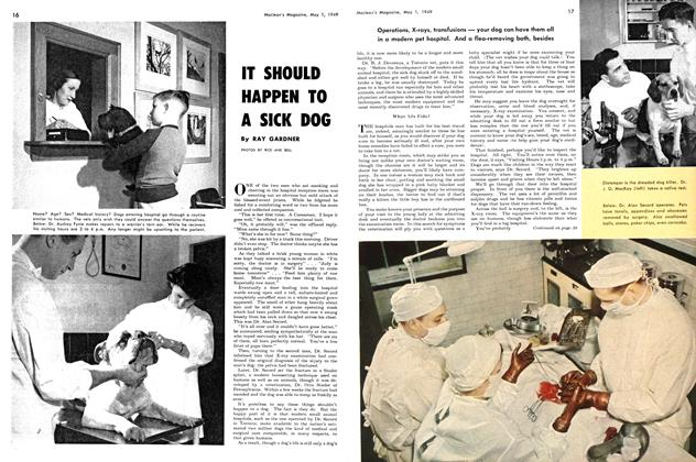 Article Preview: IT SHOULD HAPPEN TO A SICK DOG, May 1949 | Maclean's