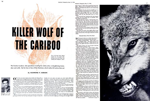 Article Preview: KILLER WOLF OF THE CARIBOO, May 1950 | Maclean's