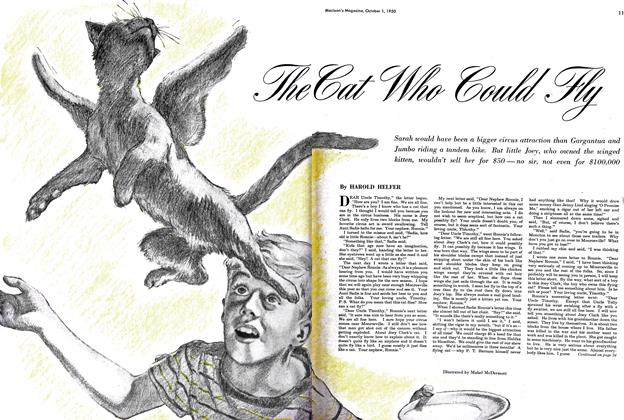Article Preview: The Cat Who Could Fly, October 1950 | Maclean's