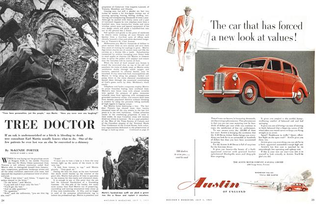 Article Preview: TREE DOCTOR, July 1951 | Maclean's