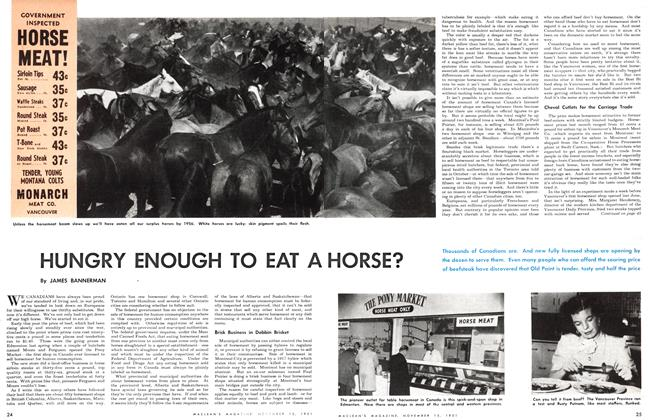 Article Preview: HUNGRY ENOUGH TO EAT A HORSE?, November 1951 | Maclean's