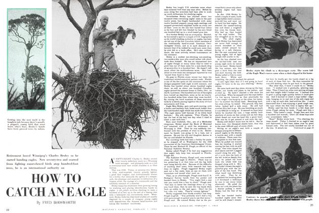 Article Preview: HOW TO CATCH AN EAGLE, February 1952 | Maclean's