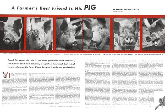 Article Preview: A Farmer's Best Friend Is His PIG, September 1953 | Maclean's