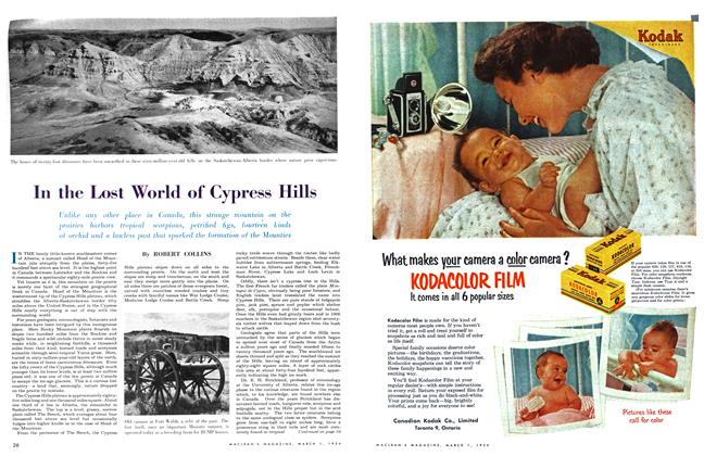 Article Preview: In the Lost World of Cypress Hills, March 1954 | Maclean's