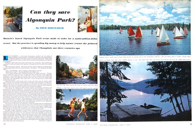 Article Preview: Can they save Algonquin Park?, June 1954 | Maclean's