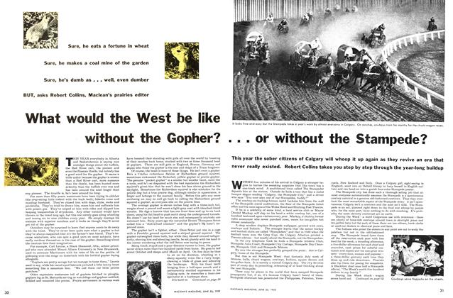 Article Preview: . . . or without the Stampede?, June 1955 | Maclean's
