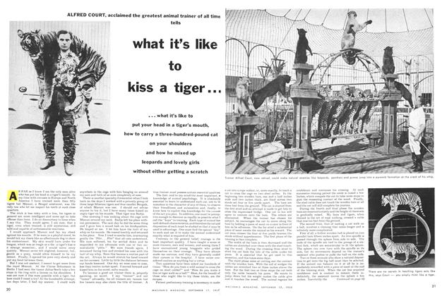 Article Preview: what it's like to kiss a tiger..., September 1955 | Maclean's