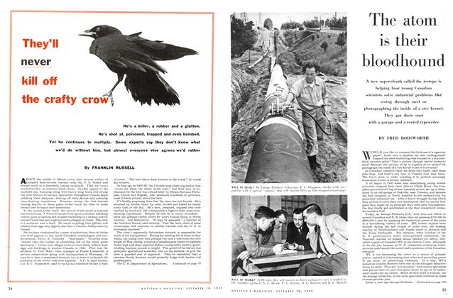 Article Preview: The atom is their bloodhound, December 1955 | Maclean's