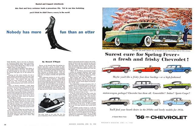Article Preview: Nobody has more fun than an otter, April 1956 | Maclean's