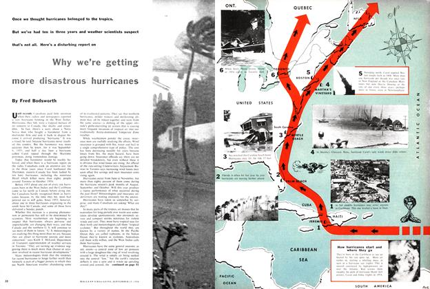 Article Preview: Why we're getting more disastrous hurricanes, September 1956 | Maclean's