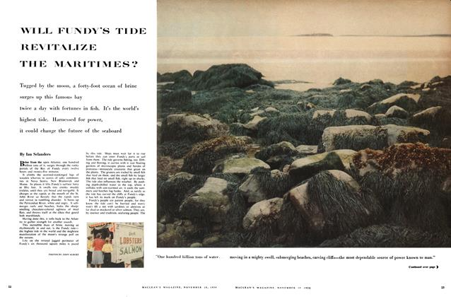 Article Preview: WILL FUNDY'S TIDE REVITALIZE THE MARITIMES?, November 1956 | Maclean's