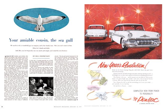 Article Preview: Your amiable cousin, the sea gull, January 1957 | Maclean's