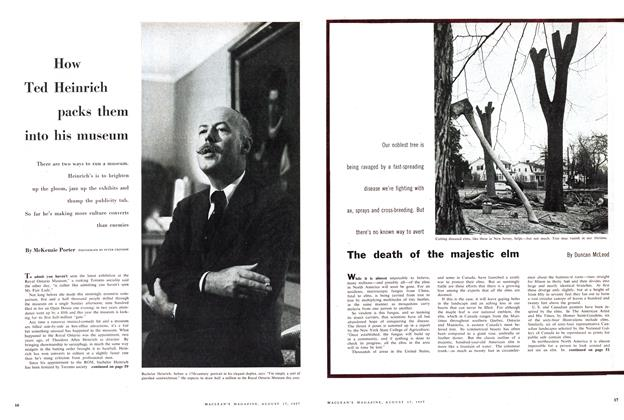 Article Preview: The death of the majestic elm, August 1957 | Maclean's